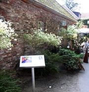 Kunstpfad